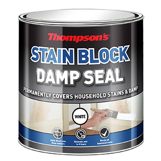 Thompson's Stain Block / Damp Seal 250ml